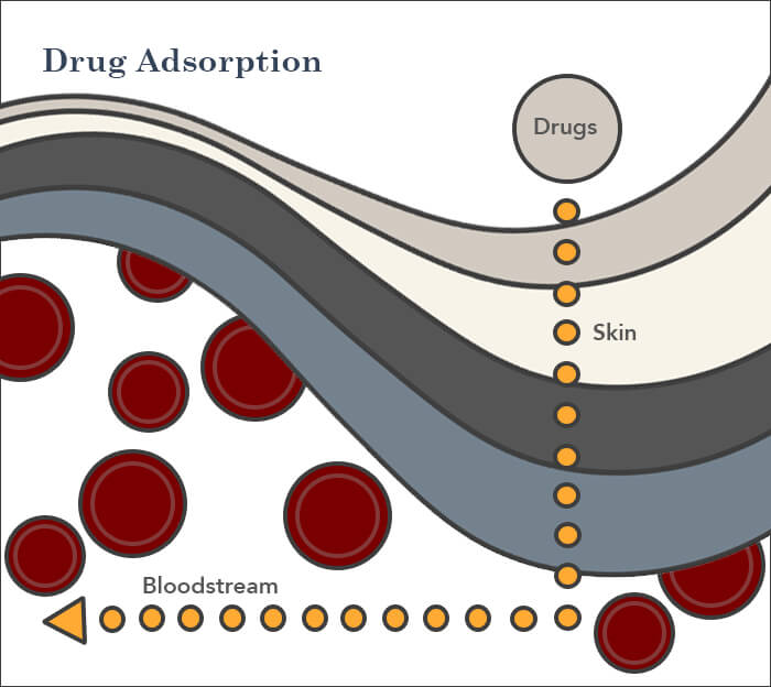 drug adsorption