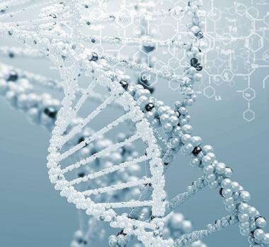 genes and addiction